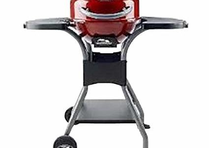 Masterbuilt Electric Patio Grill Review