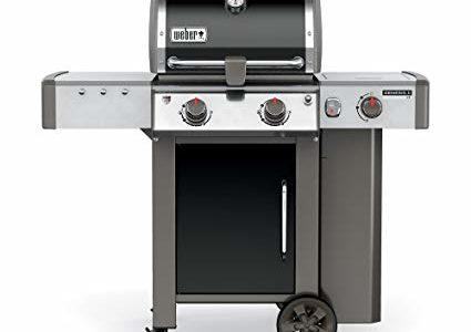 Weber 60014001 Genesis II LX E-240 Liquid Propane Grill, Black Review